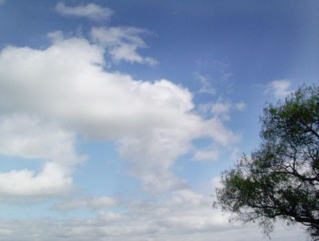Look... a Cloud by Guidai