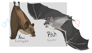 Pitch and Yaw Ref Sheet by MBPanther
