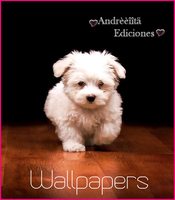 Wallpapers :) by Andreeiitaediiciones