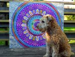 Huge Mandala Picture for size by Lou-in-Canada