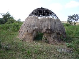 Traditional Hut 1 by raindroppe