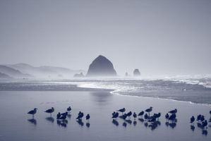 cannon beach III by MIKEDOODLES