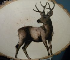 Deer Pyrograph 2 by amoonlitdawn