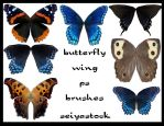 butterfly-wing ps brushes by seiyastock