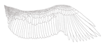 Free Eagle Wing Lineart by Aerophoinix