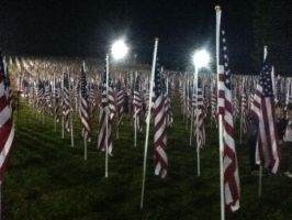 Healing Field 3 by wittlecabbage