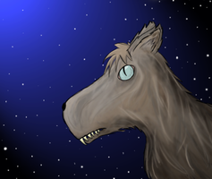 Wolf at Night by Narlth