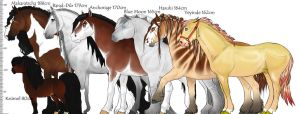 Size Reference Of EH Breeds by Okami-Haru