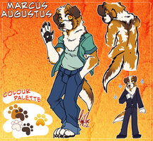 COM: Marcus Ref by carnival
