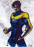 Jim Lee's Nightwing by innerpeace1979