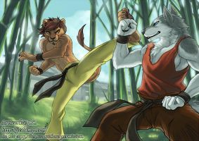 KungFu fighting by J-C