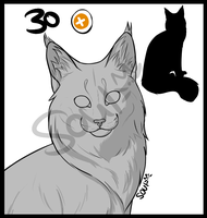 Maine coon lines by Soulphur
