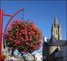 Towers and Flowers by sags