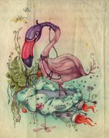 Flamingo by Kluke