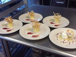 Panna Cotta with Apple Gelee, Rasp Coulis, Tulie by Gd00dle