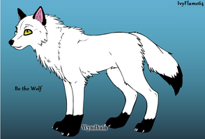 Bo the Wolf :) by IvyFlame64