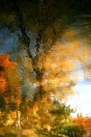 autumn in the river by JAKOKTO