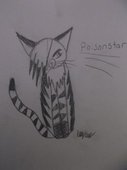 Poisonstar Drawing from today by WarriorCatLillyheart