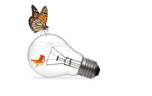 The Fish in a Lightbulb and The Butterfly by denzleah