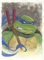 Leonardo watercolor by MichaelDooney