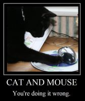 Cat and Mouse by Rahiden