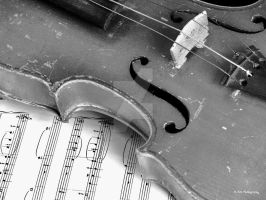 Grandpa's Violin by erbphotography