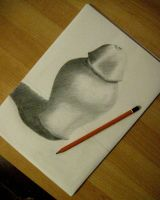 First drawing lesson - Chiaroscuro - by Larocka84