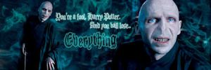 Voldemort - best line banner by poundingonthedoor