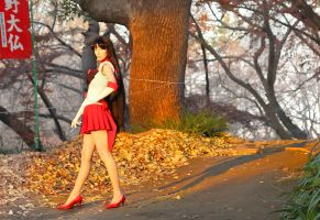 Sailor Mars...888 by foux86