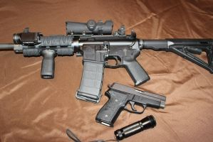 Smith and Wesson MP15 and a Sig Sauer P228 by DementedInk