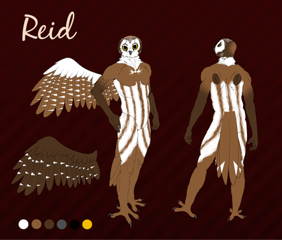 Reid by Clapperson