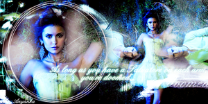 The Vampire Diaries Banner by theanyanka