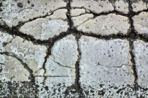 Roadpaint Cracks Texture 01 by Limited-Vision-Stock