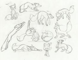 Fox cartoon sketches by sapphire-blackrose
