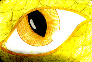 Eye of the Dragon by Candle-stic