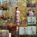 Forest Fairy Pack 6 by Nekoha-stock