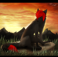 :C P: Wildfur365 by XBlackIce