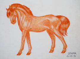 Standing Orange by Salvada