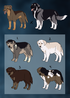 BIG mutt puppy adoptables :TAKEN: by Kultapossu