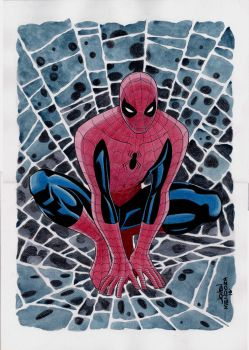 Spider-Man Commission by wardogs101