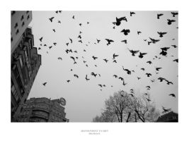 Abandonment To Grey by JuliaKretsch