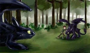 Meeting Another Night Fury by little-ampharos