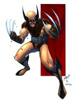 JonBoy s Wolverine colored by bennyfuentes