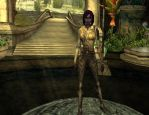 DemonFem Is My Newest DDO Character 00 by Tiffany-Hailes