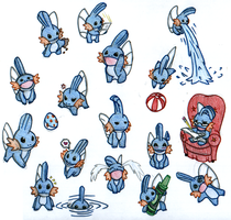 Mudkip Collage Colored by koga-san