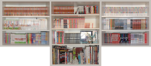 My Manga/Artbook Collection [18.08.12] by LisaKM