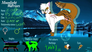 Zody (updated) | Rainclan | Warrior | MLW by FlyingWithFire