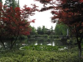 A Peaceful Place in China by misspez