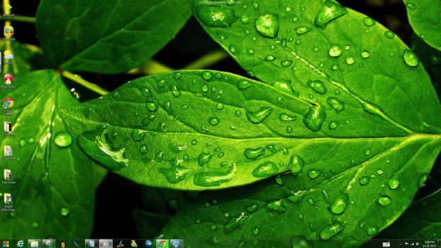Green Windows Theme by yonited
