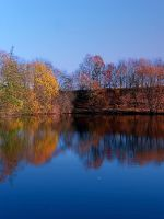 Indian summer reflections at the pond by patrickjobst